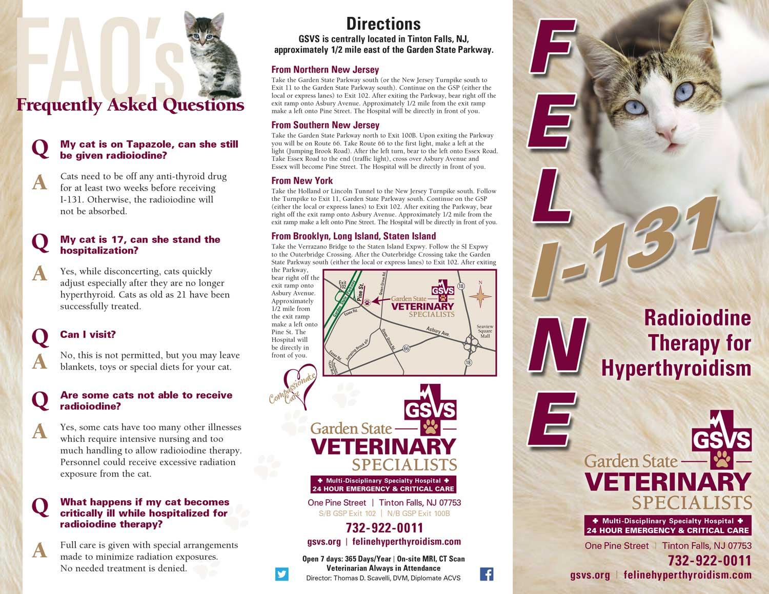 Feline I 131 Brochure_Outside