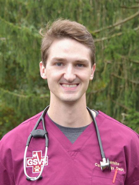Andrew J. White, DVM